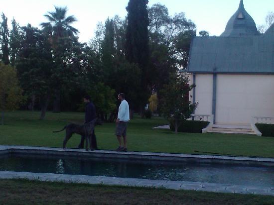 Villa Victoria Lodge: Walking with Mariano