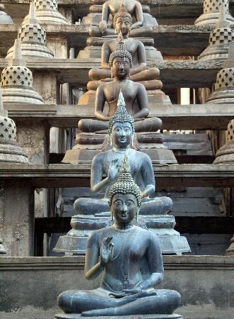Temple bouddhiste de Gangaramaya : Buddas