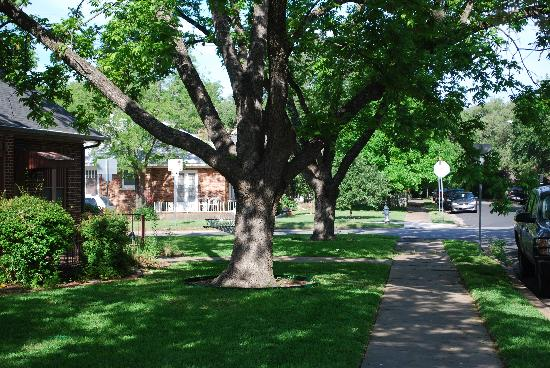 nice neighborhood of 1110 Carriage House Inn, on same side of street; charming & peaceful.
