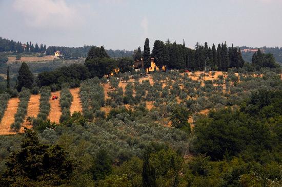 Villa Di Campolungo Agriturismo: Panorama
