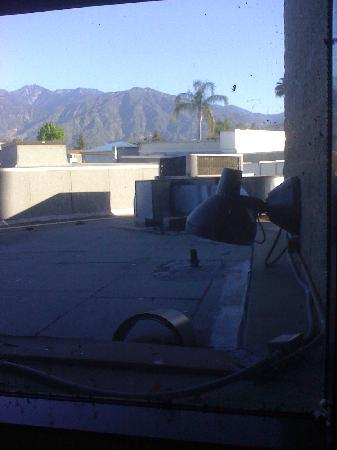 Monrovia, CA: Outside WIndow One: