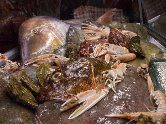 Antica Trattoria Le Barettine: La vetrina del pesce.