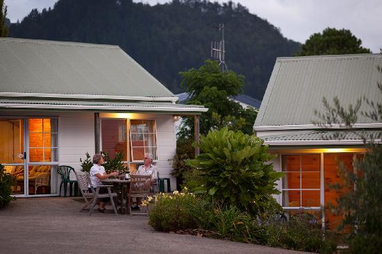 Pauanui Pines Motor Lodge: Mt Pauanui