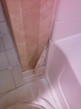 Holiday Inn Express Indianapolis South: Bathroom wallpaper falling apart, should be fixed