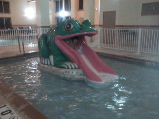 Country Inn & Suites by Radisson, Galena, IL: Great Froggy slide for the toddlers