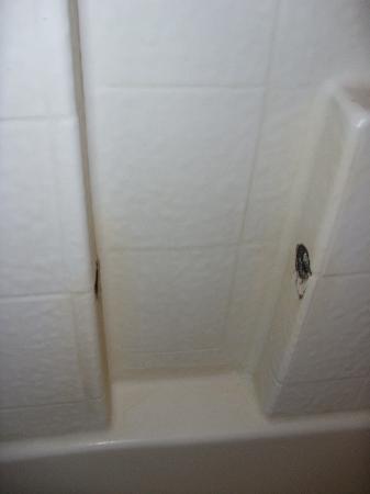 Duarte Inn : Handle missing from tub insert.