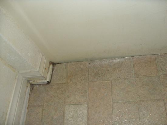 Duarte Inn : Vinyl coming up, filth on baseboards, walls of bathroom