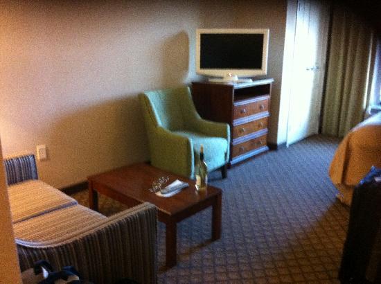 Comfort Suites: Comfortable suite with swivel flat screen TV