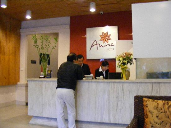 Anise Hotel: Reception