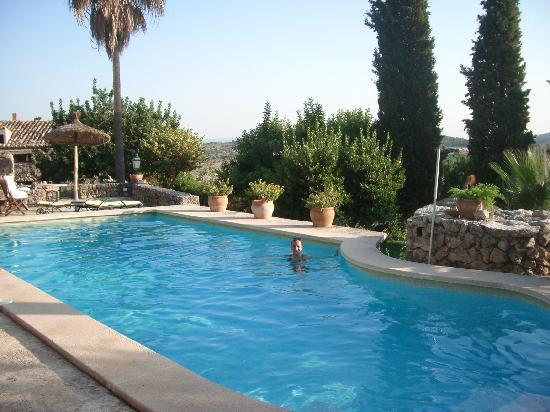 Finca Es Castell: the pool