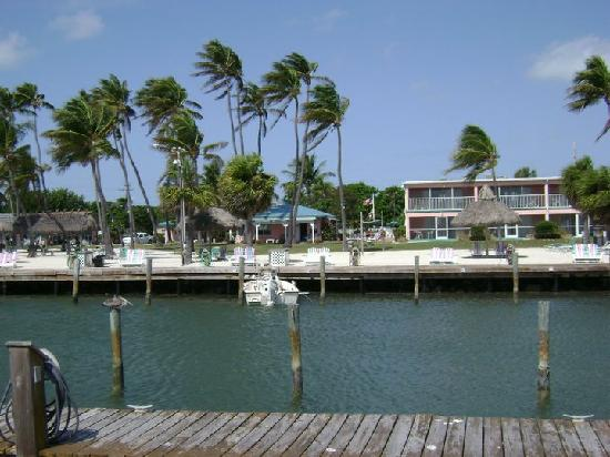 Breezy Palms Resort: View from the oceanfront dock looking back  to the property