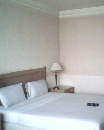 Royal Parkview Hotel: my room