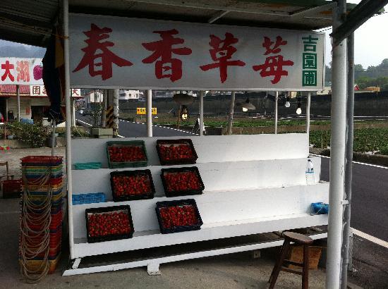 Chun Hsiang Strawberry Farm : Strawberries about NTD175 a box
