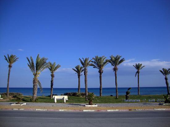Hammamet (La Mahometa), Túnez: Hammamet