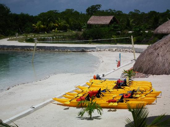 Royal Palm Island Resort: plage+canoe