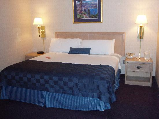 Ramada Geneva Lakefront: king bed