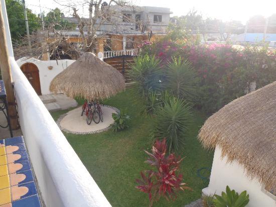 Tamarindo Bed and Breakfast: Back Yard