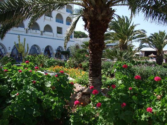 Regency Hotel and Spa : hôtel depuis jardins