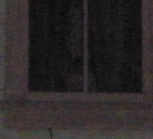 Avalon, Калифорния: Ghost pic of a ghost in the other window of the same picture!