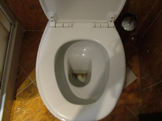 Hotel Picasso: Toilet