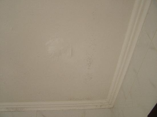 Hotel Picasso: Mould on ceiling in bathroom