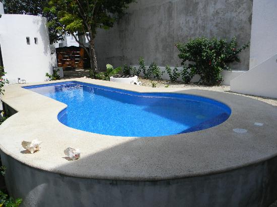 Tamarindo Bed and Breakfast: Perfectly clean pool... a little chilly, but my hubby enjoyed it!