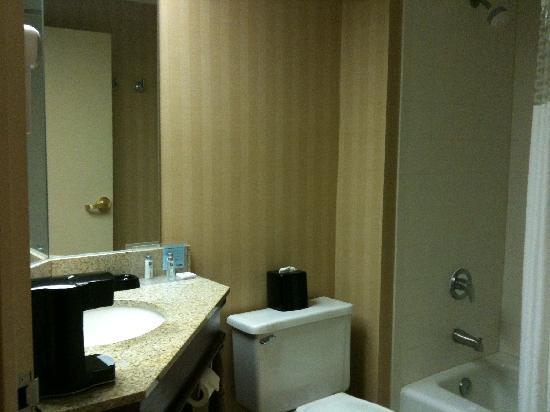 Hampton Inn Cincinnati/Airport South : Bathroom