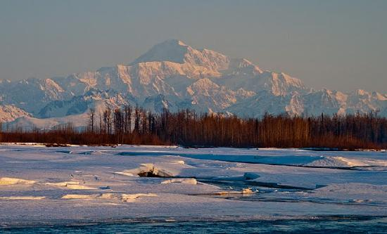 Talkeetna Cabins照片