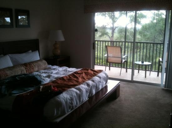 Palisades Resort: master bedroom and screened patio