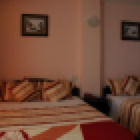 Phuong Nhung Hotel: Standard Room