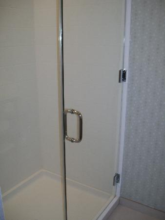 SpringHill Suites Harrisburg Hershey: shower