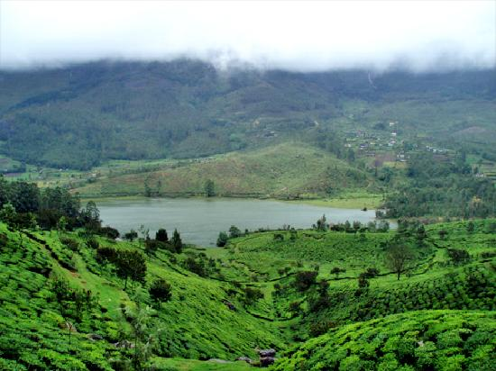 Grand Plaza Munnar : an excellent experience