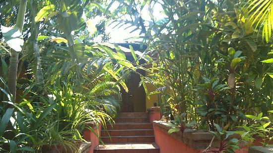 Guesthouse El Nancite : cuenta con bellos y muy cuidados jardines