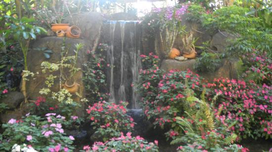 Aston Kaanapali Shores: garden view