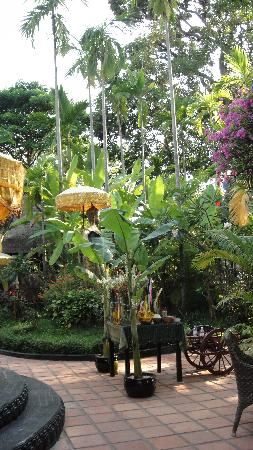 Bopha Siem Reap Boutique Hotel: garden