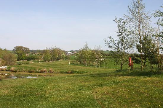 Thornton Lodge Farm B&B : A fishing lake within the farm land
