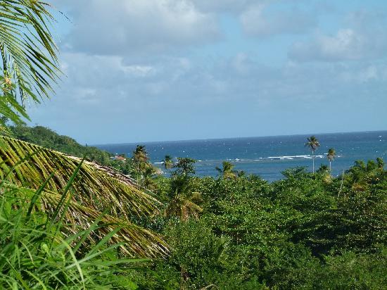 Grenada Gold Guest Apartments: Ausblick Grenada Gold
