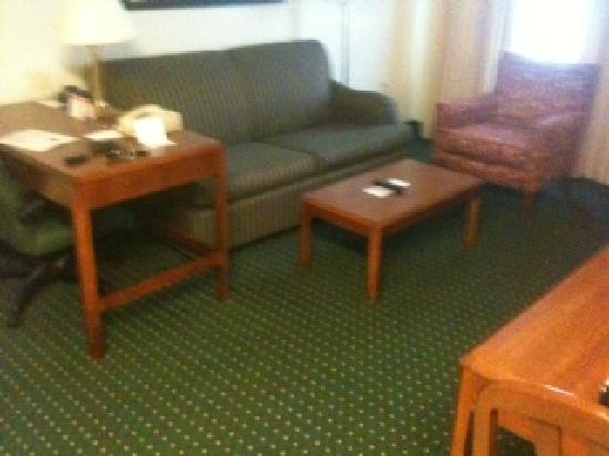 Residence Inn Charleston: Suite sitting area