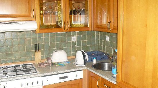 Hotel Apartments Wenceslas Square : kitchen