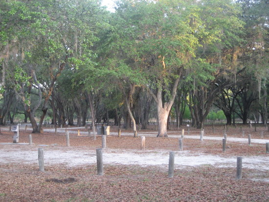 Moss Park Orlando 2018 All You Need To Know Before You