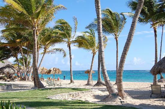 Iberostar Grand Hotel Bavaro: The beach at Iberosta Grand