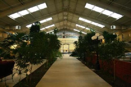 Econo Lodge : walkway to the indoor pool