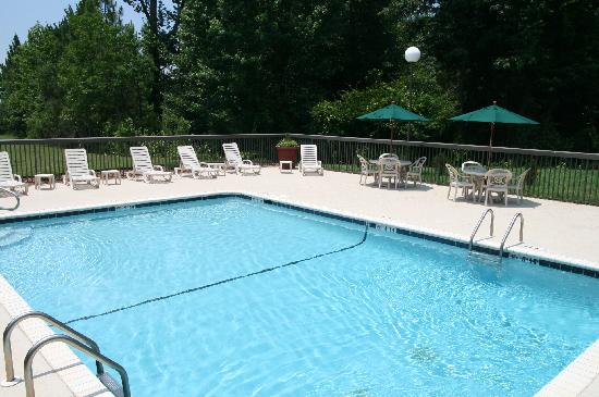 Hampton Inn Greenville : Outdoor Swimming Pool