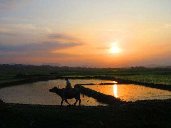 Phong Nha Farmstay: Dreaming of Phong Nha area