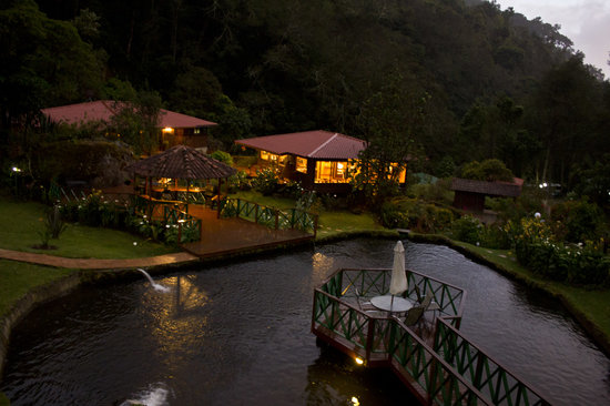 Trogon Lodge San Gerardo de Dota : A view from the restaurant