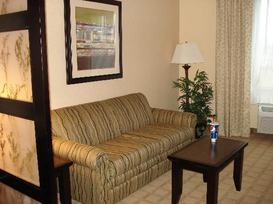 Holiday Inn Express Hotel & Suites Denver Northeast - Brighton : sitting area  (sofa)