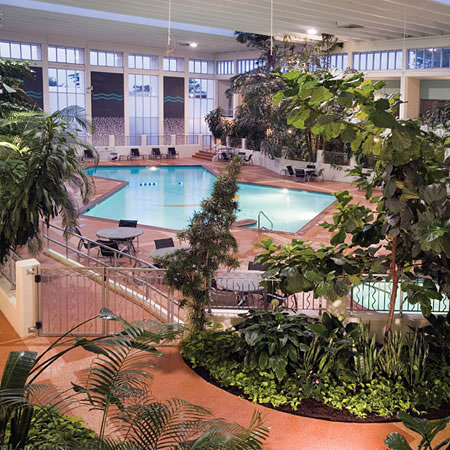 Oasis Hotel and Convention Center, an Ascend Hotel Collection Member : Indoor pool nestled inside a gorgeous tropical atrium