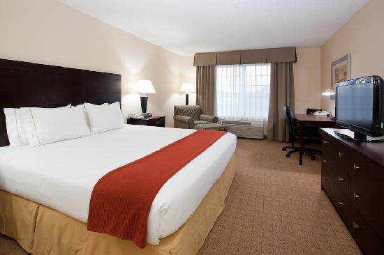 Holiday Inn Express Hotel & Suites: Denver Tech Center: Standard King