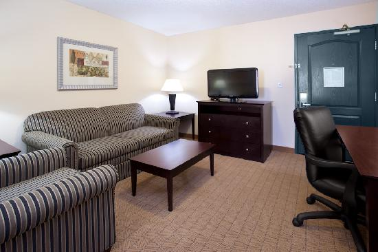 ‪‪Holiday Inn Express Hotel & Suitees: Denver Tech Center‬: King Suite‬