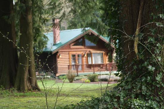 Harrison Mills, แคนาดา: Luxurious Cabins